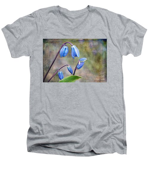 Bluebells And Beyond Men's V-Neck T-Shirt