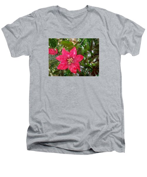 Men's V-Neck T-Shirt featuring the photograph  Christmas Poinsettia by Sharon Duguay