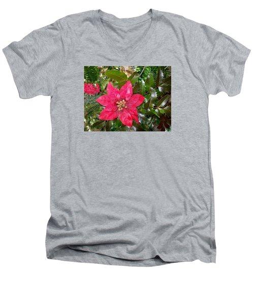 Christmas Poinsettia Men's V-Neck T-Shirt by Sharon Duguay