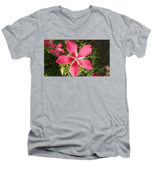 Hibiscus Coccineus Men's V-Neck T-Shirt