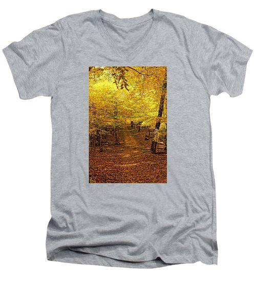 A Walk In The Woods Men's V-Neck T-Shirt by Steven Clipperton