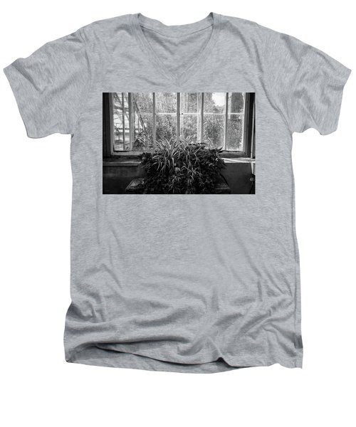 Allan Gardens Men's V-Neck T-Shirt