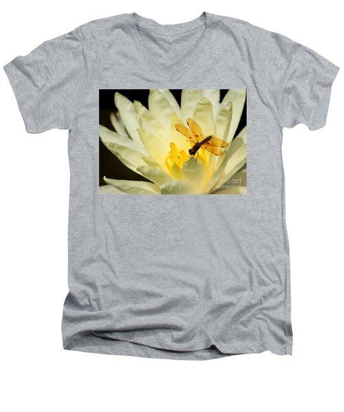 Amber Dragonfly Dancer 2 Men's V-Neck T-Shirt