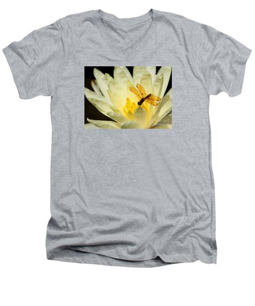 Amber Dragonfly Dancer 2 Men's V-Neck T-Shirt