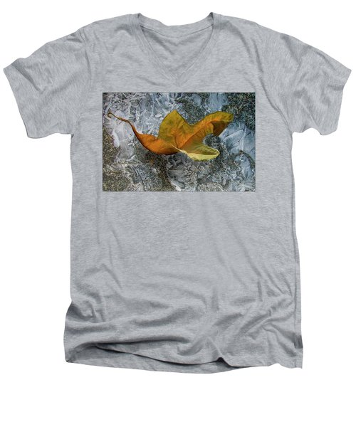 Autumn Leaf Men's V-Neck T-Shirt