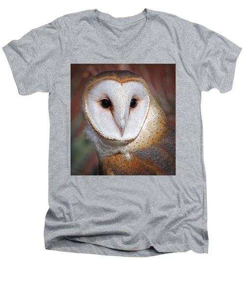 Barn Owl Men's V-Neck T-Shirt by Elaine Malott