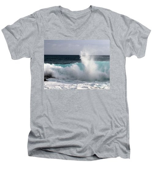 Beauty Men's V-Neck T-Shirt