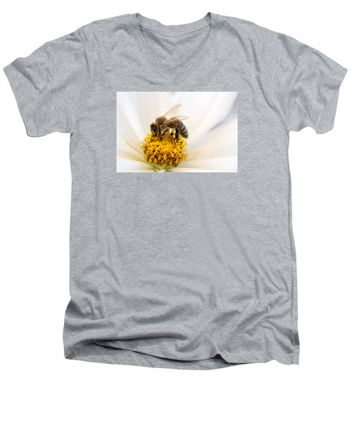 Bee Time Men's V-Neck T-Shirt by Sabine Edrissi