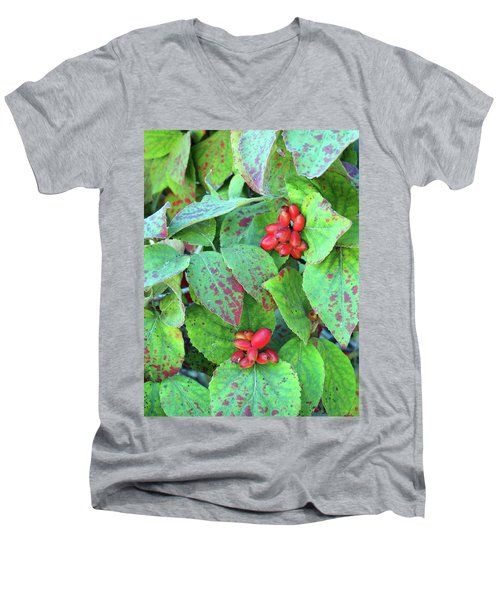 Berries Men's V-Neck T-Shirt