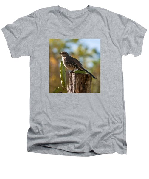 Bird On A Post Men's V-Neck T-Shirt
