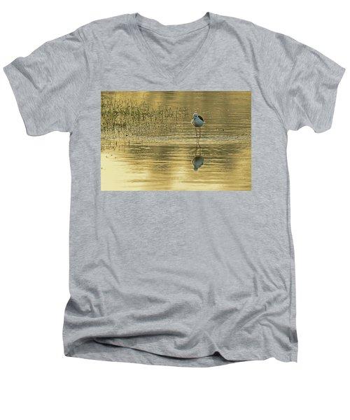 Black-winged Stilt Men's V-Neck T-Shirt