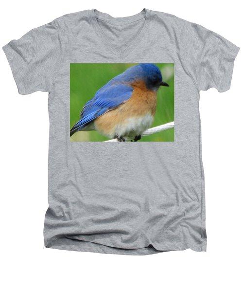 Blue Bird Men's V-Neck T-Shirt by Betty Pieper