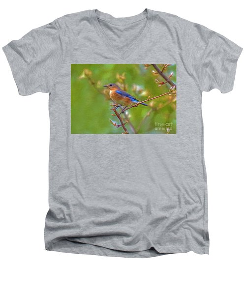 Bluebird Men's V-Neck T-Shirt by Marion Johnson