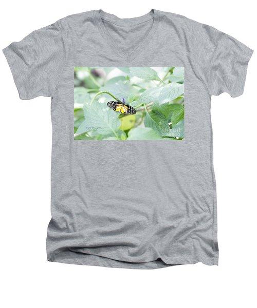 Tiger Butterfly Men's V-Neck T-Shirt