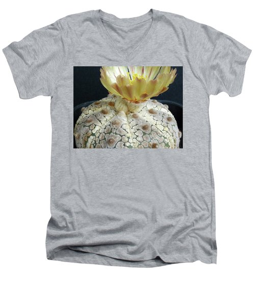 Cactus Flower 1 Men's V-Neck T-Shirt