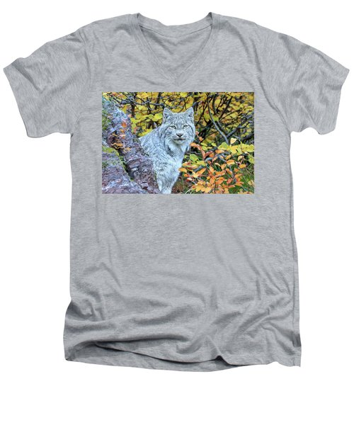 Canada Lynx Men's V-Neck T-Shirt by Jack Bell