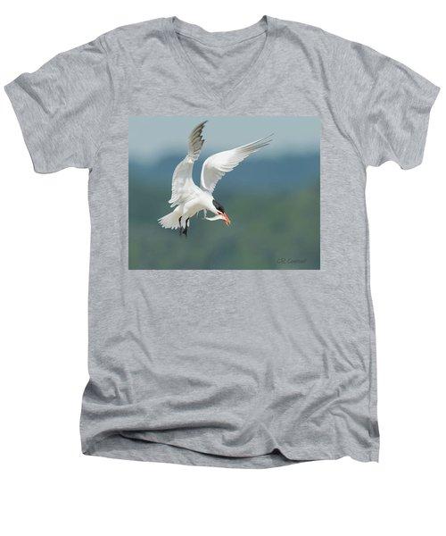Caspian Tern With Fish Men's V-Neck T-Shirt