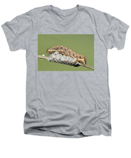 Caterpillar And Parasitic Wasp Eggs Men's V-Neck T-Shirt