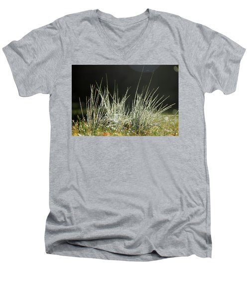 Close-up Of Dew On Grass, In A Sunny, Humid Autumn Morning Men's V-Neck T-Shirt