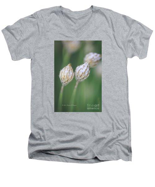 Cupid's Dart Men's V-Neck T-Shirt