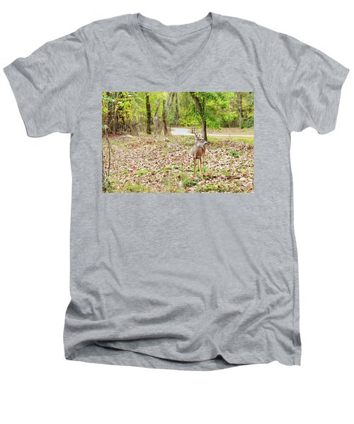 Deer Me, Are You In My Space? Men's V-Neck T-Shirt