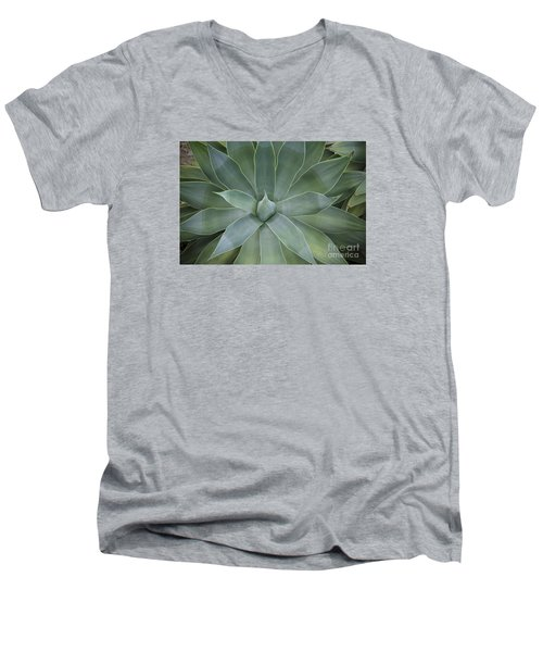 Detail Of An Agave Attenuata Men's V-Neck T-Shirt