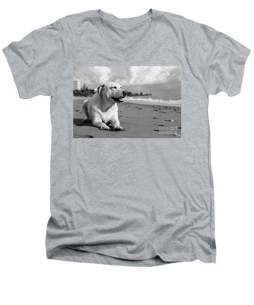 Dog - Monochrome 5  Men's V-Neck T-Shirt