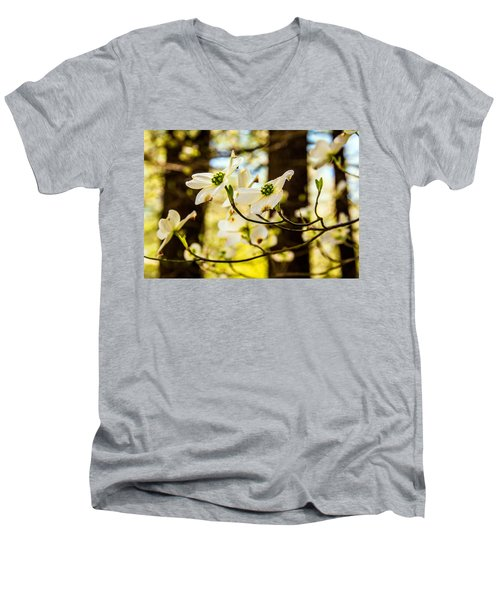 Dogwood Day Afternoon Men's V-Neck T-Shirt by John Harding