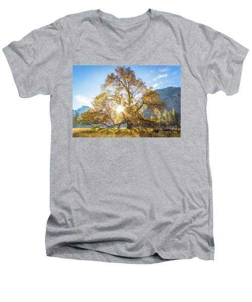 Men's V-Neck T-Shirt featuring the photograph Elm Tree  by Vincent Bonafede