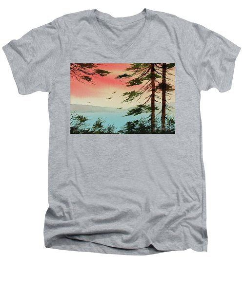 Men's V-Neck T-Shirt featuring the painting Evening Light by James Williamson