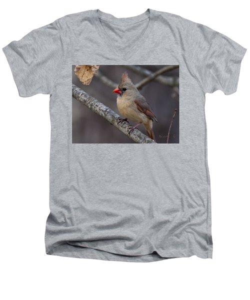 Female Cardinal Men's V-Neck T-Shirt