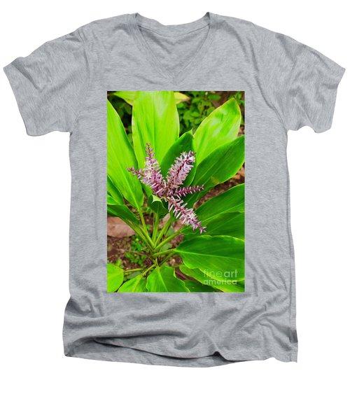 Flowering Ti Plant Men's V-Neck T-Shirt