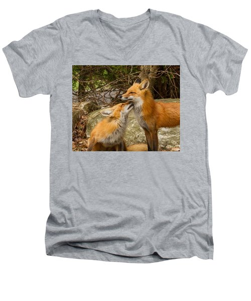 Foxes In Love Men's V-Neck T-Shirt by Brian Caldwell