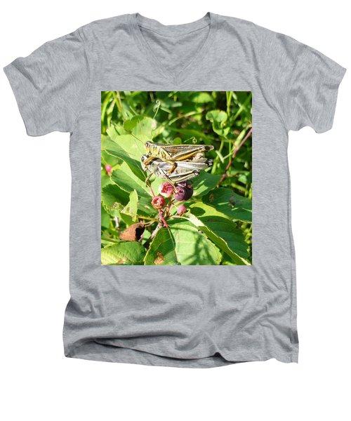 Grasshopper Love Men's V-Neck T-Shirt