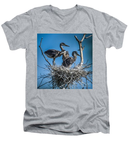 Great Blue Heron On Nest Men's V-Neck T-Shirt