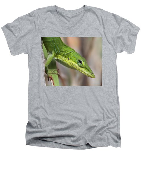 Green Beauty Men's V-Neck T-Shirt