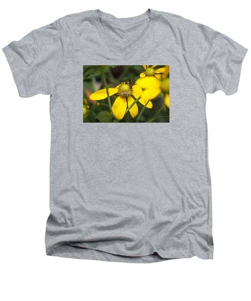 Green Headed Coneflowers Painted Men's V-Neck T-Shirt