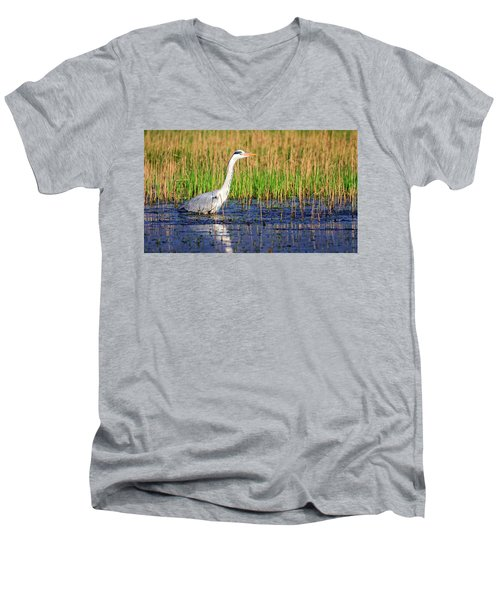 Grey Heron, Ardea Cinerea, In A Pond Men's V-Neck T-Shirt