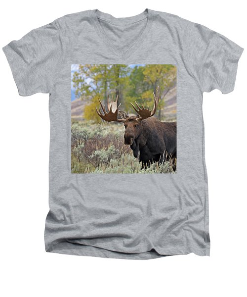 Handsome Bull Men's V-Neck T-Shirt