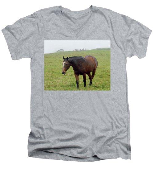 Horse In The Fog Men's V-Neck T-Shirt by Pamela Walton