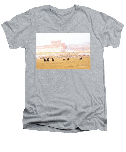 Horses Men's V-Neck T-Shirt
