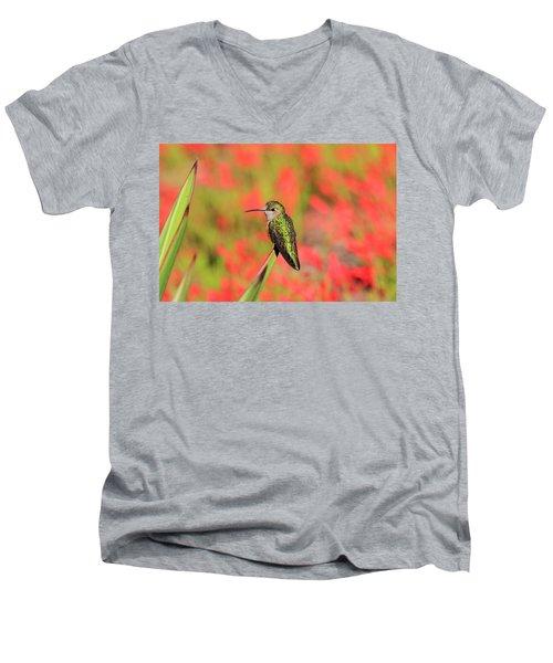 Hummingbird #5 Men's V-Neck T-Shirt