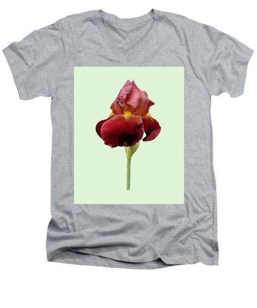 Men's V-Neck T-Shirt featuring the photograph Iris Vitafire Green Background by Paul Gulliver
