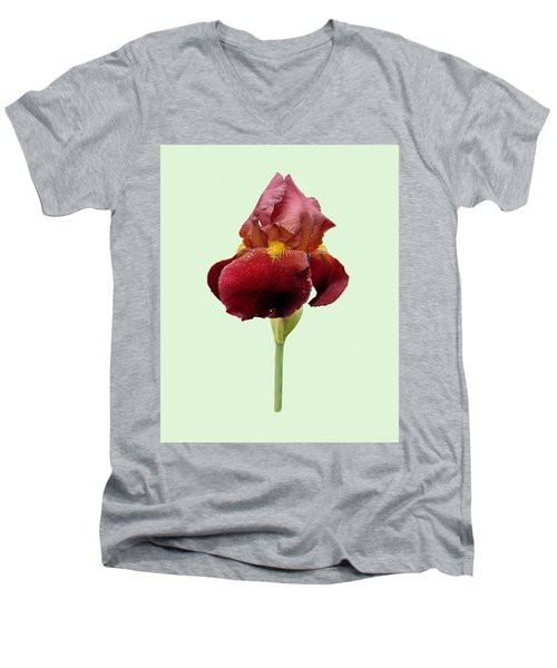 Iris Vitafire Green Background Men's V-Neck T-Shirt