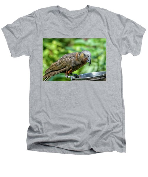 Men's V-Neck T-Shirt featuring the photograph Kaka by Patricia Hofmeester