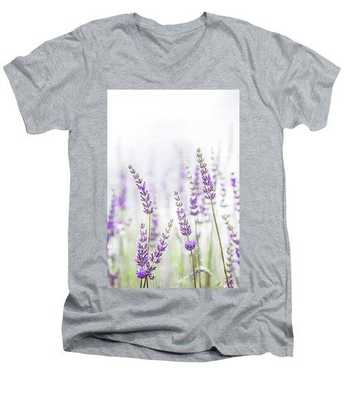 Lavender Flower In The Garden,park,backyard,meadow Blossom In Th Men's V-Neck T-Shirt