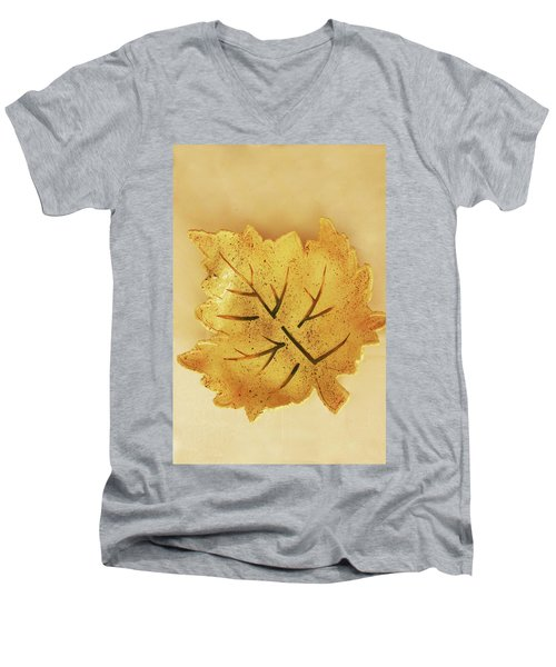 Leaf Plate2 Men's V-Neck T-Shirt by Itzhak Richter