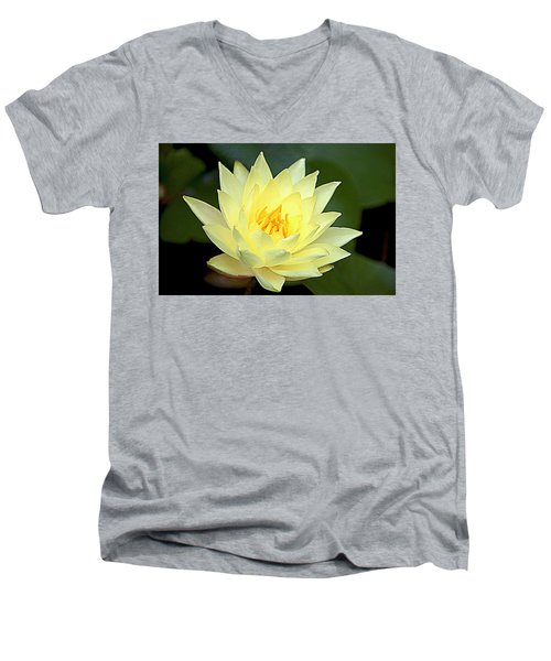 Men's V-Neck T-Shirt featuring the photograph Lily by Jerry Cahill
