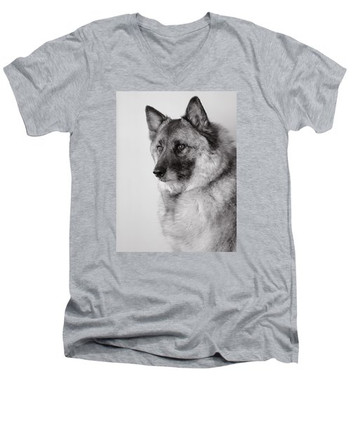 Dog Loki Men's V-Neck T-Shirt