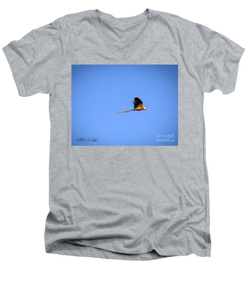 Macaw In Flight Men's V-Neck T-Shirt by Melissa Messick